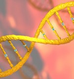 Genome Analytics: The Battle Between Science and Privacy