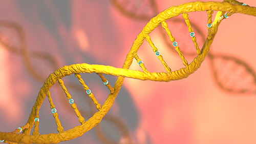 The field of genome analytics is a delicate balance between science and privacy.